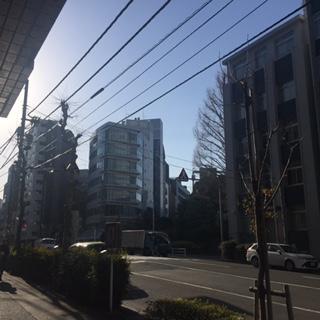 IMG_4776.JPG