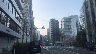 IMG_4115.JPG
